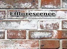 efflorescence in masonry